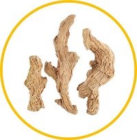 ganjiang-dried-ginger